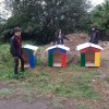 The members of Leaders' School placed dog houses for homeless animals